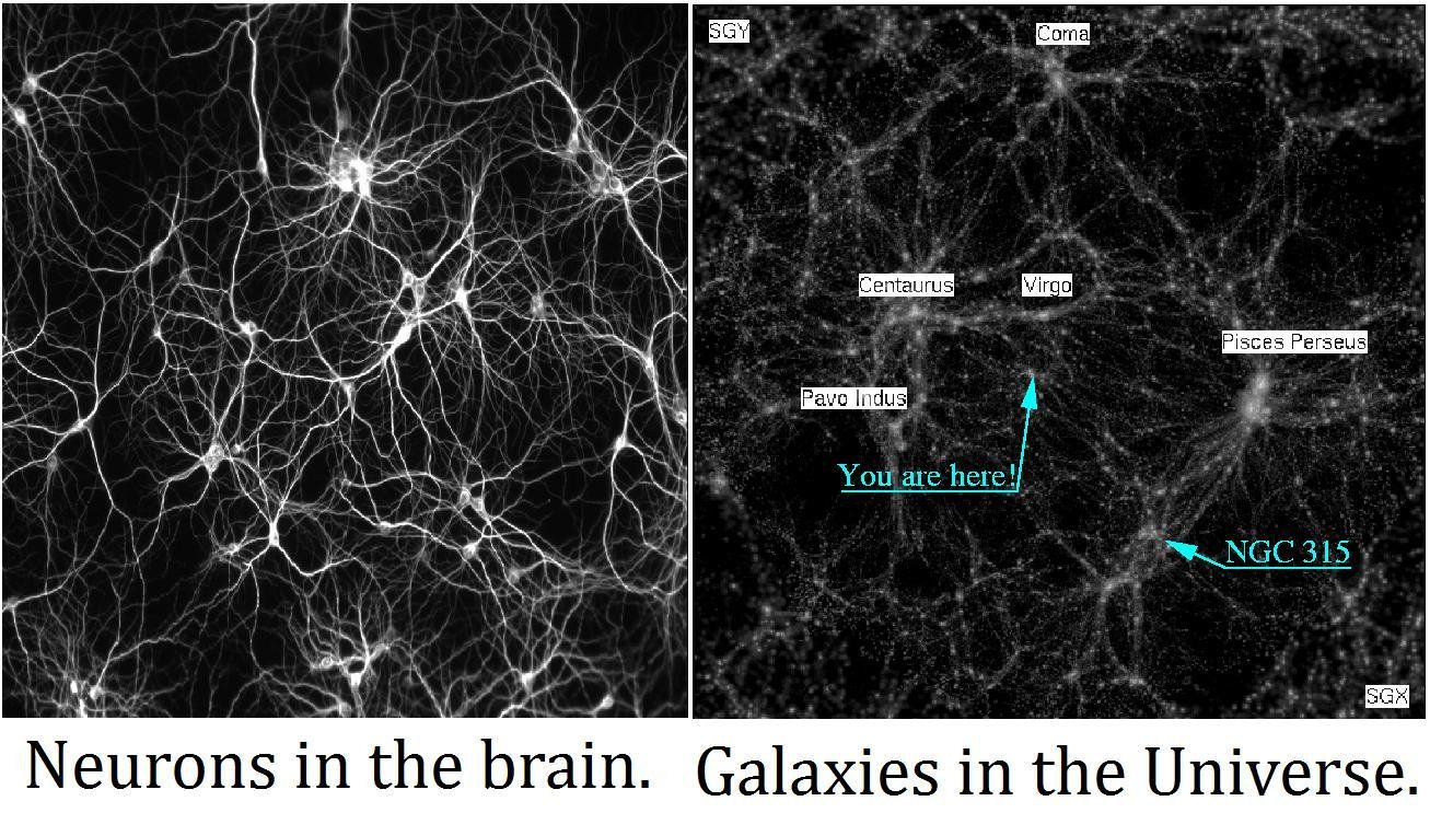 neurons, galaxies
