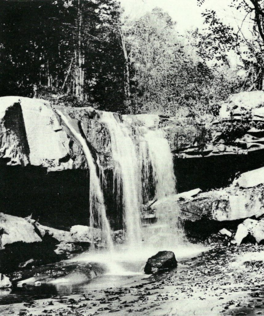 waterfall bear run